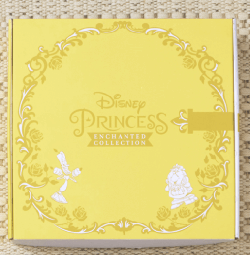 Disney-Princess-Costume-Box