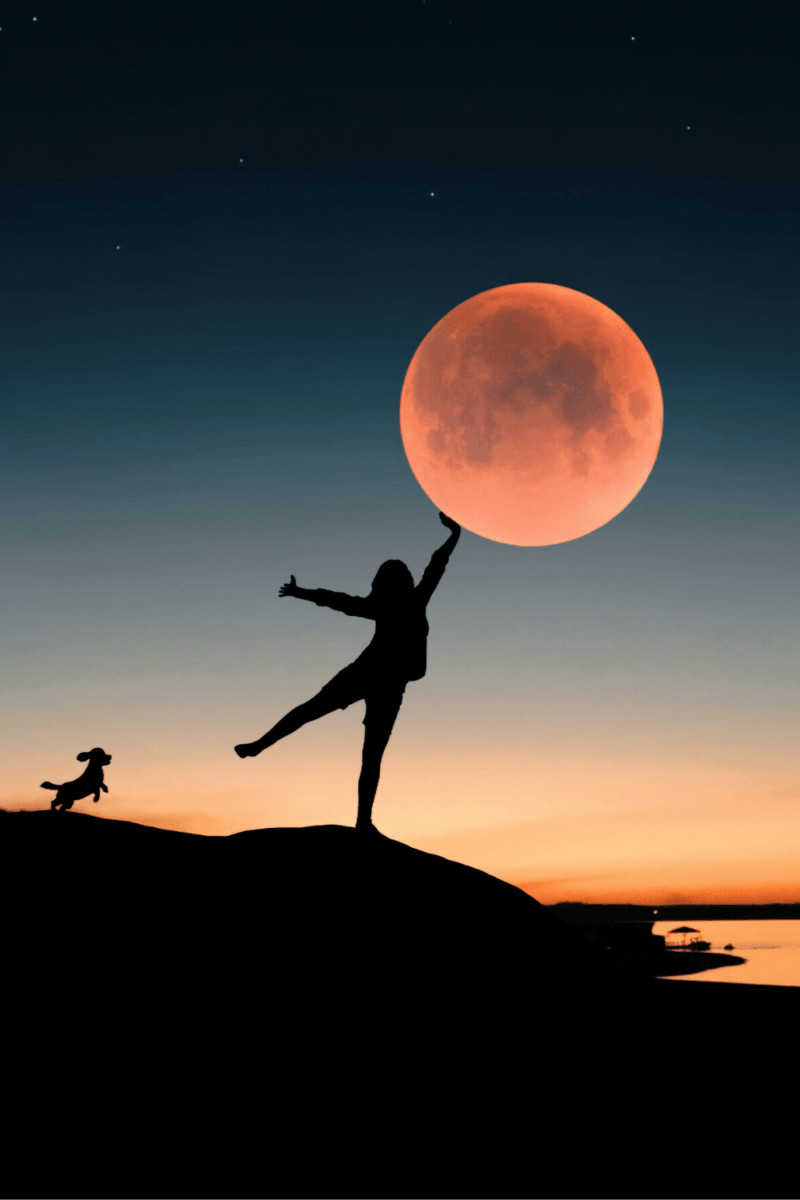 What Is Your Moon Sign & What Does It Mean?